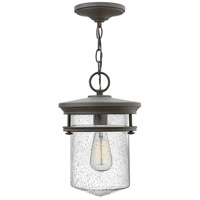 Hadley 1 Light 9 inch Buckeye Bronze Outdoor Hanging Light, Clear Seedy Glass