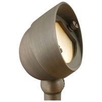 Hinkley 16571MZ-LED Hardy Island 12V 3.8 watt Matte Bronze Landscape Spot Light in LED, Frosted Lens