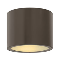 Hinkley Lighting Luna 2 Light Outdoor Ceiling Lantern in Bronze 1663BZ-LED