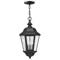 Edgewater LED 10 inch Black Outdoor Hanging Light