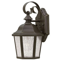 Edgewater 1 Light 11 inch Oil Rubbed Bronze Outdoor Wall Lantern in Clear Seedy Panels, Incandescent, Clear Seedy Panels Glass