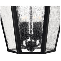 Hinkley 1675BK Edgewater 4 Light 26 inch Black Outdoor Wall Mount in Seedy, Incandescent alternative photo thumbnail