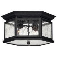 Hinkley 1683BK Edgewater 2 Light 13 inch Black Outdoor Flush Lantern in Seedy