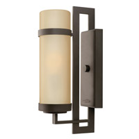 Hinkley Lighting Cordillera 1 Light Outdoor Wall Lantern in Buckeye Bronze 1694KZ photo thumbnail