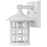 Freeport LED 9 inch Classic White Outdoor Wall Mount in Clear Seedy