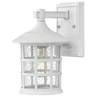 Freeport 1 Light 9 inch Classic White Outdoor Wall Mount in Incandescent, Clear Seedy