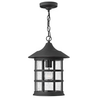 Freeport LED 1 inch Black Outdoor Hanging Lantern in Clear Seedy, Clear Seedy Glass