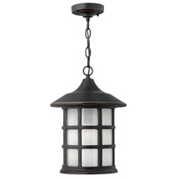 Freeport 1 Light 10 inch Olde Penny Outdoor Hanging Lantern in Etched Seedy, Incandescent