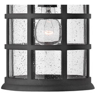 Hinkley 1802BK Freeport 1 Light 10 inch Black Outdoor Hanging Light in Incandescent, Clear Seedy Glass alternative photo thumbnail