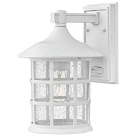 Freeport LED 12 inch Classic White Outdoor Wall Mount in Clear Seedy