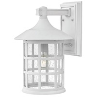 Freeport LED 15 inch Classic White Outdoor Wall Mount in Clear Seedy