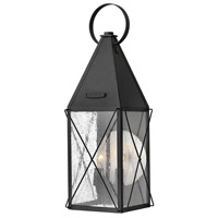 York 2 Light 21 inch Black Outdoor Wall Mount, Clear Seedy Glass