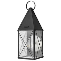 York 3 Light 25 inch Black Outdoor Wall Mount, Clear Seedy Glass