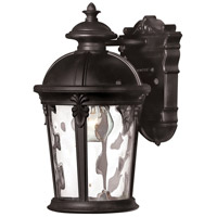 Windsor LED 13 inch Black Outdoor Wall Mount, Clear Water Glass
