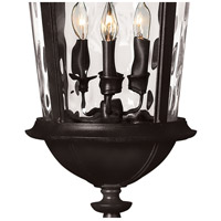 Hinkley 1892BK Windsor 4 Light 13 inch Black Outdoor Hanging Light in Incandescent, Clear Water Glass alternative photo thumbnail