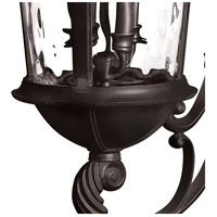 Hinkley 1895BK Windsor 4 Light 32 inch Black Outdoor Wall Mount in Incandescent, Clear Water Glass alternative photo thumbnail