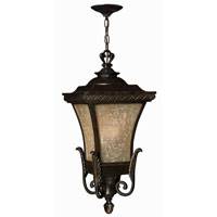 Hinkley Lighting Brynmar 1 Light Outdoor Hanging Lantern in Regency Bronze 1932RB-ES photo thumbnail