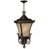 Brynmar 1 Light 12 inch Regency Bronze Outdoor Hanging in LED, Amber Linen Glass
