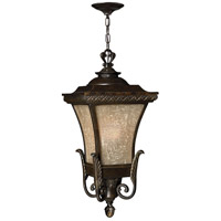 Hinkley Lighting Brynmar 1 Light Outdoor Hanging Lantern in Regency Bronze 1932RB