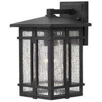 Tucker LED 12 inch Museum Black Outdoor Wall Mount, Clear Seedy Glass