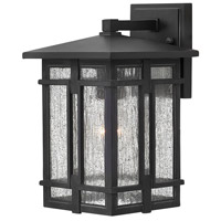 Hinkley 1960MB Tucker 1 Light 12 inch Museum Black Outdoor Wall Mount in Incandescent, Museum Bronze, Clear Seedy Glass