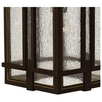 Hinkley 1960OZ Tucker 1 Light 12 inch Oil Rubbed Bronze Outdoor Wall Mount, Clear Seedy Glass alternative photo thumbnail