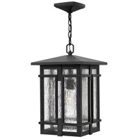 Tucker LED 11 inch Museum Black Outdoor Hanging Light, Clear Seedy Glass