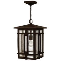 Tucker LED 11 inch Oil Rubbed Bronze Outdoor Hanging Light, Clear Seedy Glass