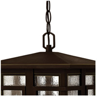 Hinkley 1962OZ-LED Tucker LED 11 inch Oil Rubbed Bronze Outdoor Hanging Light, Clear Seedy Glass alternative photo thumbnail