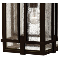 Hinkley 1962OZ Tucker 1 Light 11 inch Oil Rubbed Bronze Outdoor Hanging Light, Clear Seedy Glass alternative photo thumbnail