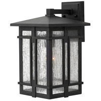 Hinkley 1964MB-LED Tucker LED 15 inch Museum Black Outdoor Wall Mount in Museum Bronze, Clear Seedy Glass