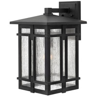 Tucker LED 18 inch Museum Black Outdoor Wall Mount, Clear Seedy Glass