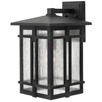 Hinkley 1965MB Tucker 1 Light 18 inch Museum Black Outdoor Wall Mount, Clear Seedy Glass