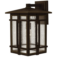 Tucker LED 18 inch Oil Rubbed Bronze Outdoor Wall Mount, Clear Seedy Glass