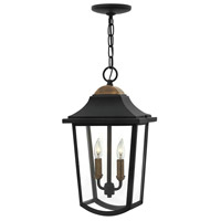 Burton 2 Light 10 inch Black Outdoor Hanging Light, Clear Beveled Glass