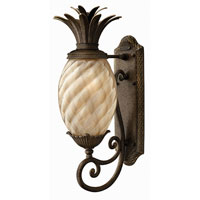 Hinkley Lighting Plantation 1 Light Outdoor Wall Lantern in Pearl Bronze 2120PZ-ES