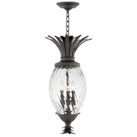 Hinkley 2122MB Plantation 4 Light 13 inch Museum Black Outdoor Hanging Light in Incandescent Clear Optic