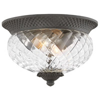 Plantation 2 Light 12 inch Museum Black Outdoor Flush Mount