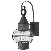 Hinkley 2200DZ Cape Cod 1 Light 18 inch Aged Zinc Outdoor Wall Mount in Incandescent