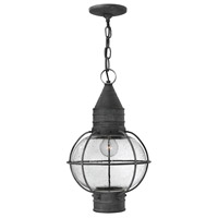 Hinkley 2202DZ Cape Cod 1 Light 11 inch Aged Zinc Outdoor Hanging Lantern in Incandescent photo thumbnail