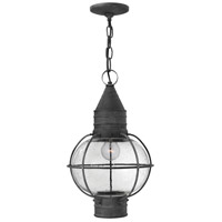 Hinkley Lighting Cape Cod 1 Light Outdoor Hanging Lantern in Aged Zinc 2202DZ-LED