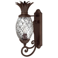 Hinkley Lighting Plantation 1 Light Outdoor Wall Lantern in Copper Bronze 2220CB