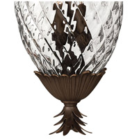Hinkley 2222CB Plantation 4 Light 13 inch Copper Bronze Outdoor Hanging Light alternative photo thumbnail