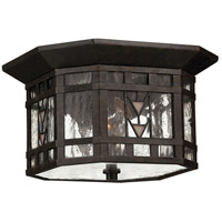 Tahoe 2 Light 10 inch Regency Bronze Outdoor Flush Lantern