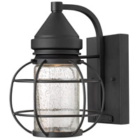 Hinkley 2250BK New Castle 1 Light 10 inch Black Outdoor Wall, Seedy Glass