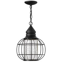 New Castle 1 Light 11 inch Black Outdoor Hanging, Seedy Glass