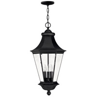 Senator 3 Light 13 inch Black Outdoor Hanging Lantern