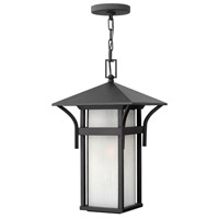 Harbor 1 Light 11 inch Satin Black Outdoor Hanging Light in Etched Seedy, Incandescent