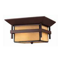 Hinkley Lighting Harbor 2 Light Outdoor Flush Lantern in Anchor Bronze 2573AR-ES