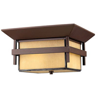 Hinkley Lighting Harbor 1 Light Outdoor Flush Lantern in Anchor Bronze with Etched Amber Seedy Bound Glass 2573AR-LED